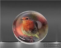 Molten Glass Round Photo Paperweight